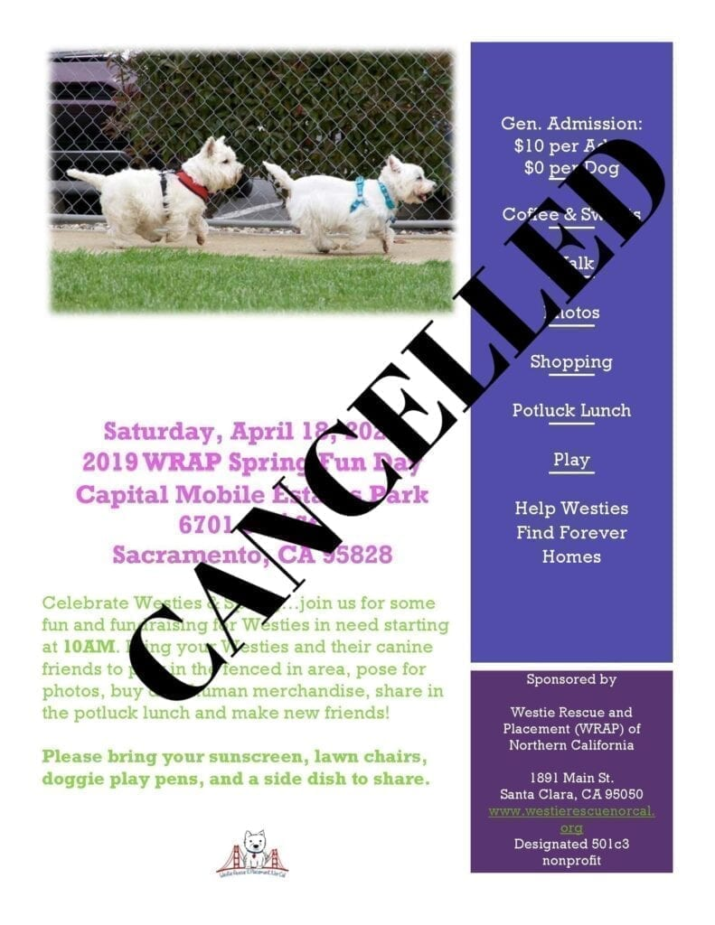 Cancelled Spring Fun Day 2020