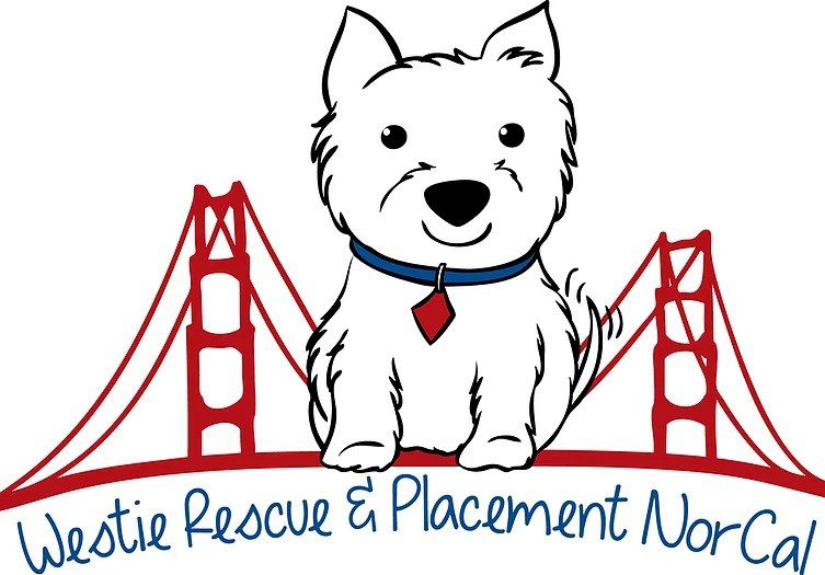 No Westies are currently available for adoption - please check back soon!